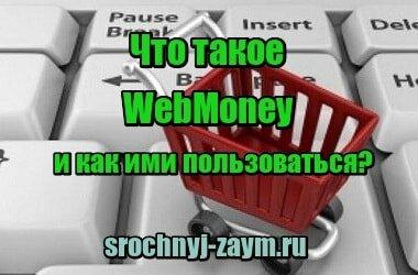 Миниатюра Что такое WebMoney и как ими пользоваться?